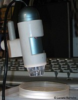 Digital microscope, un utile e piccolo microscopio digitale