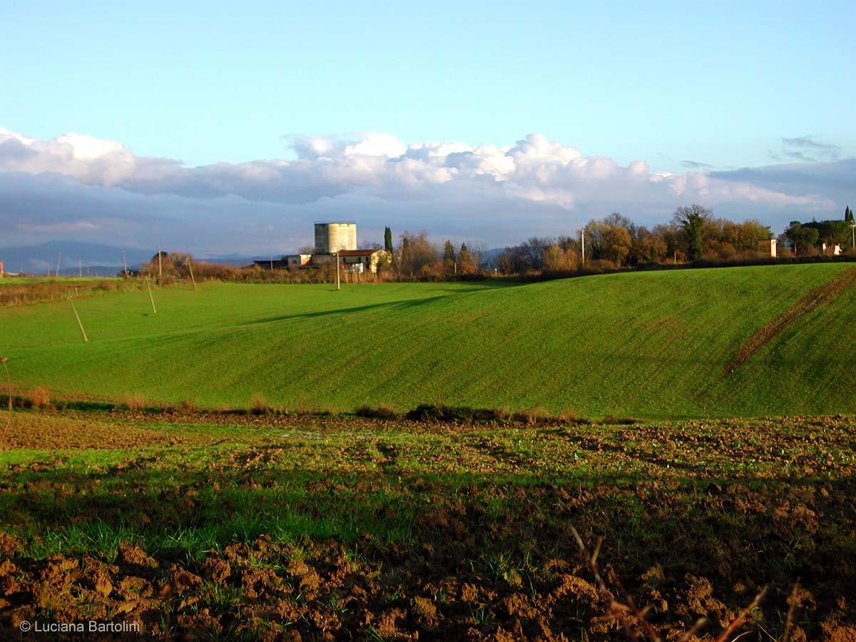 Paesaggi variazioni sul tema for Grandi planimetrie della fattoria